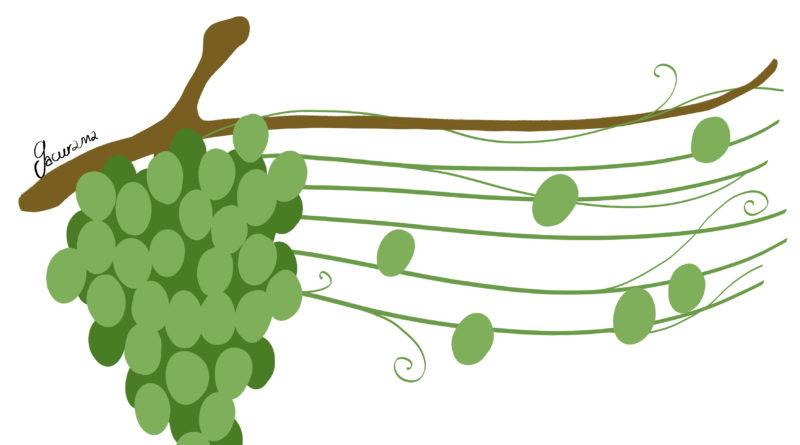 Chorale «Le Choeur des Vignes»